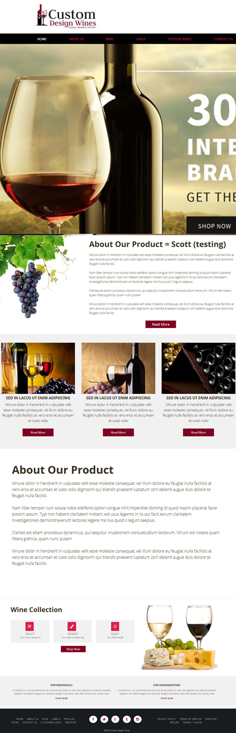 Business Website Design For Wines