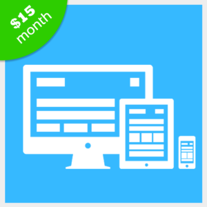custom-website-design-for-small-business-monthly-pricing