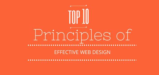 Top 10 principles of website